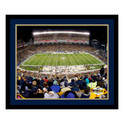 Pitt Panthers - Heinz Field Stadium Art
