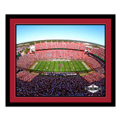 South Carolina Gamecocks - Williams Brice Stadium Art
