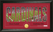 "Arizona Cardinals ""Silhouette"" Bronze Coin Panoramic Photo Mint"