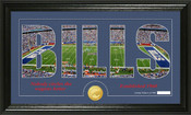 "Buffalo Bills ""Silhouette"" Bronze Coin Panoramic Photo Mint"