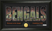 "Cincinnati Bengals ""Silhouette"" Bronze Coin Panoramic Photo Mint"