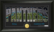 "Carolina Panthers ""Silhouette"" Bronze Coin Panoramic Photo Mint"