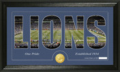 "Detroit Lions ""Silhouette"" Bronze Coin Panoramic Photo Mint"