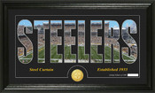 "Pittsburgh Steelers ""Silhouette"" Bronze Coin Panoramic Photo Mint"