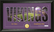 "Minnesota Vikings ""Silhouette"" Panoramic Bronze Coin Photo Mint"