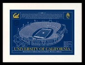 Cal Golden Bears - Memorial Stadium School Colors Blueprint Art