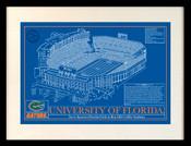 Florida Gators - Ben Hill Griffin Stadium School Colors Blueprint Art