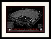 Georgia Bulldogs/Sanford Stadium Blueprint Art