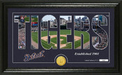 "Detroit Tigers ""Silhouette"" Panoramic Bronze Coin Photo Mint"