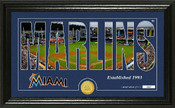 "Miami Marlins ""Silhouette"" Panoramic Bronze Coin Photo Mint"
