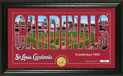 "St. Louis Cardinals ""Silhouette"" Panoramic Bronze Coin Photo Mint"