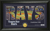 """Tampa Bay Rays """"Silhouette"""" Panoramic Bronze Coin Photo Mint"""