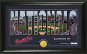 "Washington Nationals ""Silhouette"" Panoramic Bronze Coin Photo Mint"
