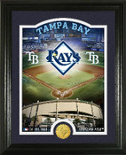 "Tampa Bay Rays ""Stadium"" Bronze Coin Photo Mint"