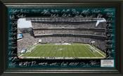 Philadelphia Eagles 2017 Signature Gridiron Collection