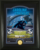 "Carolina Panthers ""Stadium"" Bronze Coin Photo Mint"