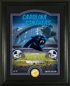 """Carolina Panthers """"Stadium"""" Bronze Coin Photo Mint"""