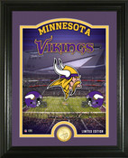 "Minnesota Vikings ""Stadium"" Bronze Coin Photo Mint"