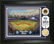Tampa Bay Rays - Tropicana Field Dirt Coin Photo Mint