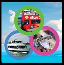 3 Tours in 1 Day. Miami Double Decker Bus Tour + Miami Boat Tour + Everglades Airboat Tour