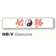 Overcome Headband 1