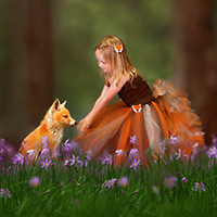Fantastic Fox Tutu Dress DIY
