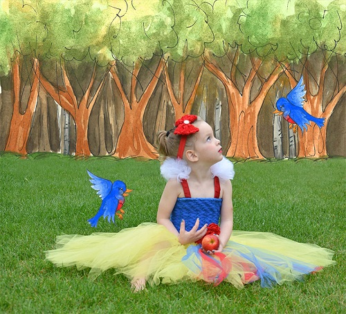 diy snow white tutu dress'></p><p>