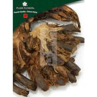 Guan Zhong - Dryopteris crassirhizoma rhizome