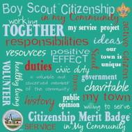 BSA Citizen 12x12 paper