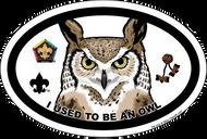 Wood Badge Owl Oval Magnet