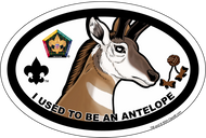 Wood Badge Antelope Oval Magnet