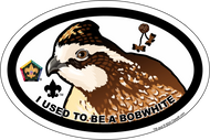 Wood Badge Bobwhite Oval Magnet