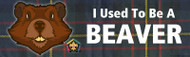 Wood Badge Beaver Tartan Bumper Sticker (SP5056)