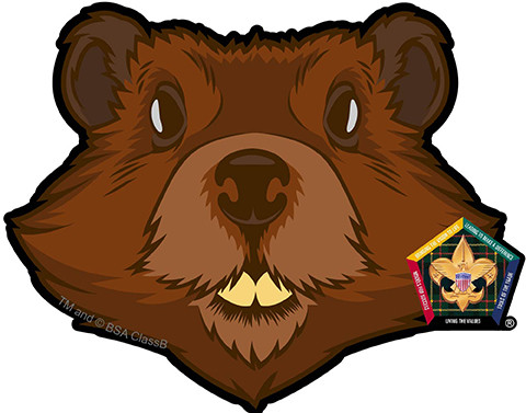 Wood Badge Beaver Car Window Sticker (SP5392) - ClassB