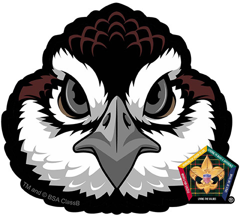 The Gallery For Gt Bobwhite Wood Badge