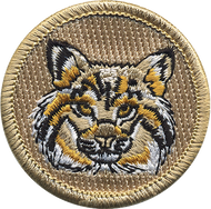 Official Licensed Bobcat Patrol Patch