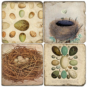 Egg & Nest Coaster Set