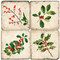 Holly branch coaster set