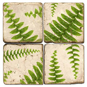 Fern Coaster Set