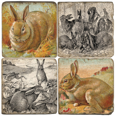 Hare Coaster Set
