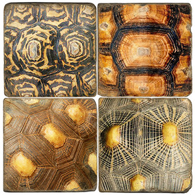 Tortoise Shell Pattern Coaster Set