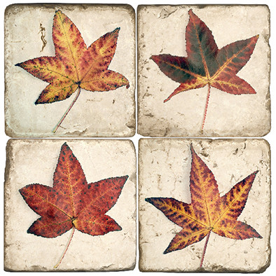 Fall Leaves Coaster Set
