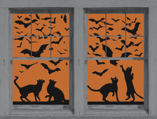 Cats and Bats posters as seen in adjoining windows