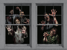 Zombie Asylum posters as seen in adjoining windows