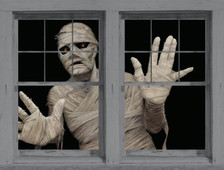 mummy posters shown in adjoining windows