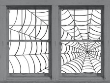 spider webs posters as seen in adjoining windows