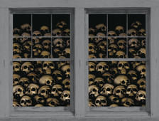 Skull posters as seen in adjoining windows