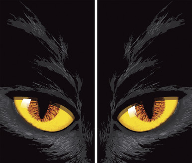 Yellow Cat Eyes Double Window Halloween Poster