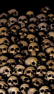 Window full of skulls decorative halloween poster