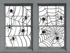Make a Scene Spiders and Web Posters as seen in adjoining windows